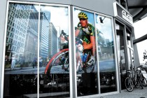 Avanti-Cycles-Window-Graphics