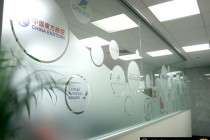 Alpha-Fit-Out-Detailed-Window-Graphics